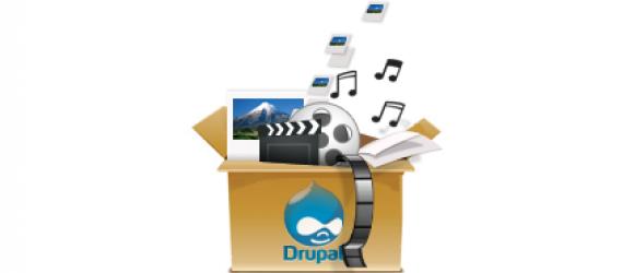 Drupal – Asset
